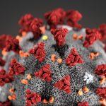 آیا کروناویروس بلای بزرگ قرن است؟